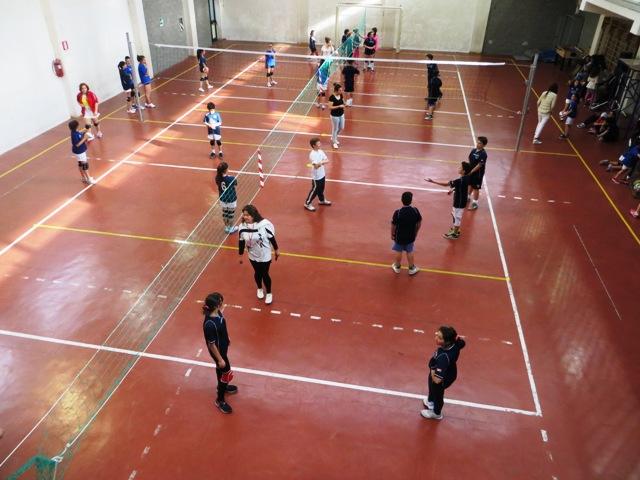 Volley per Esempio